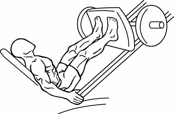 How to do leg press correctly - Use leg press safely