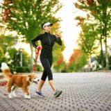 Training with the dog: the advantages and the ad hoc program