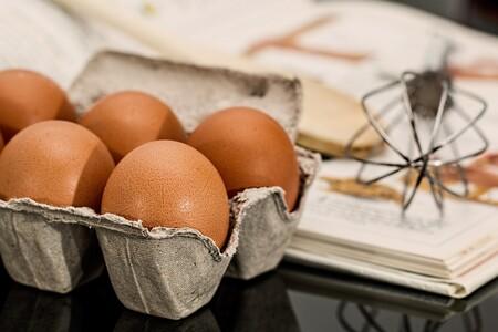 Egg 944 495 1280
